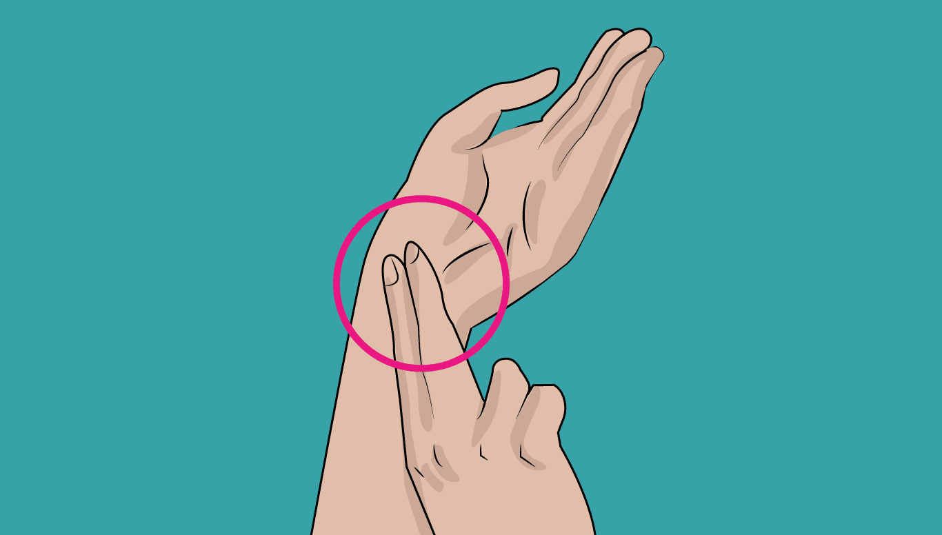 Batimentos cardíacos- O que é, como medir, o que fazer quando está alta?