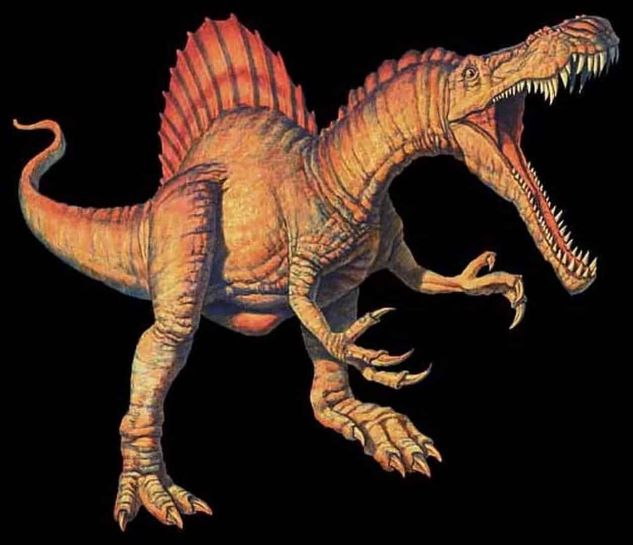 Conheça agora o maior dinossauro carnívoro de todos, o espinossauro