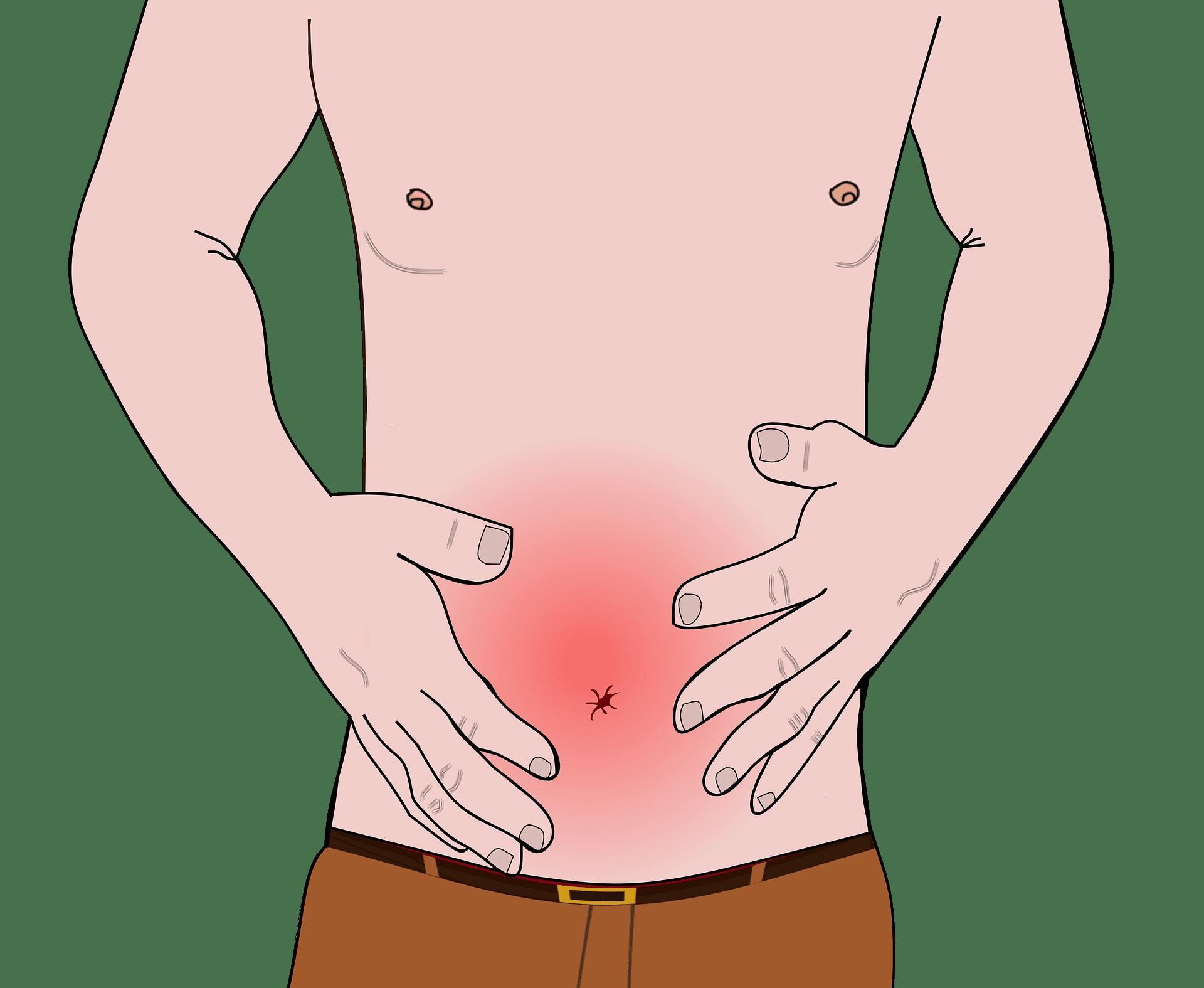 Pedra na vesícula: Sintomas, causas e tratamento