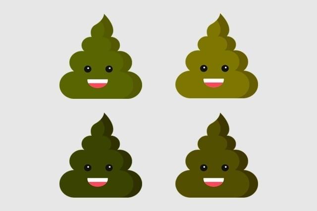 Fezes verdes - 5 causas possíveis para o fenômeno