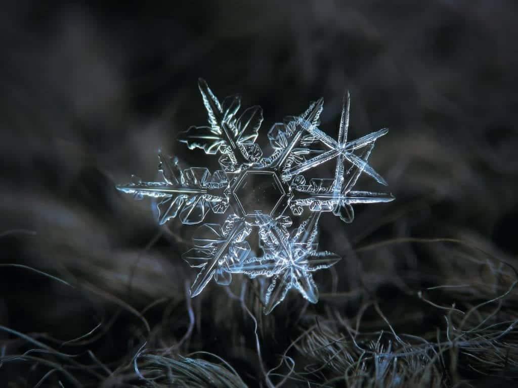 Flocos de neve: como se formam e por que têm o mesmo formato