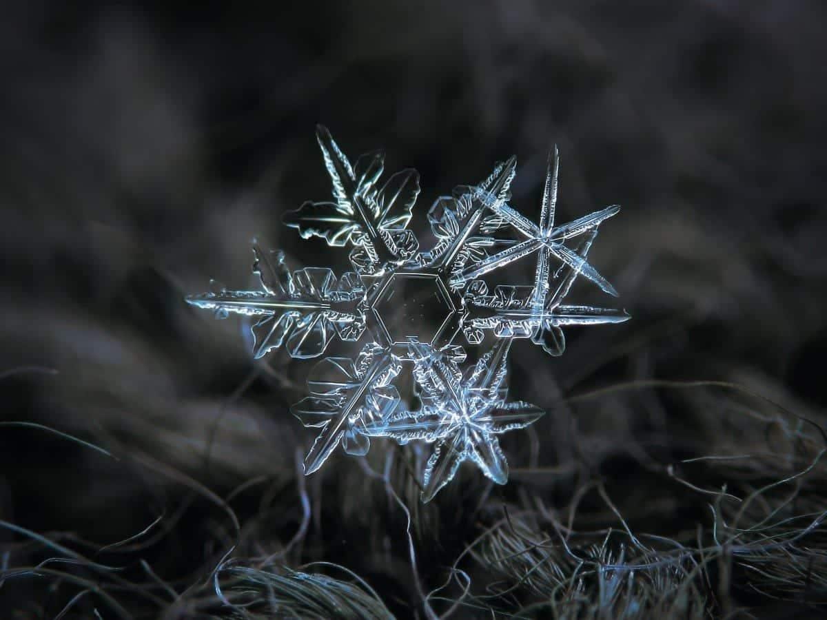 Flocos de neve - Como se formam e por que têm um formato tão particular