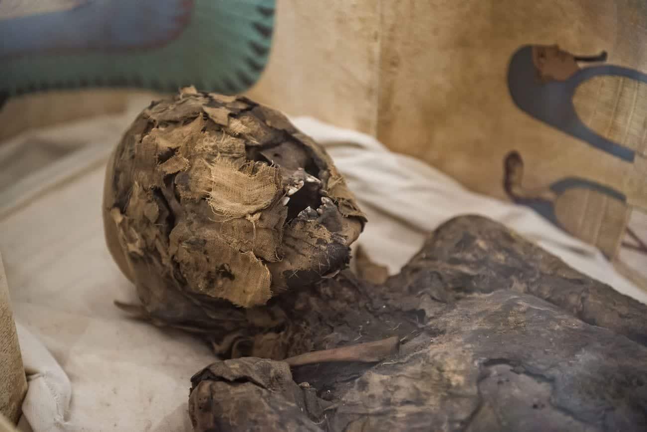 Mumificação - O que é e como é técnica usada desde o Egito Antigo