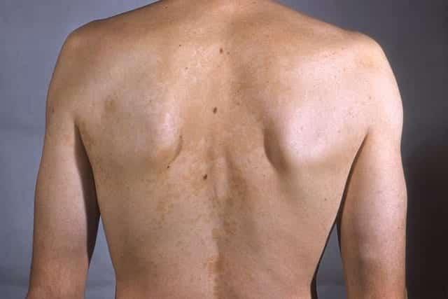 Pano Branco costas