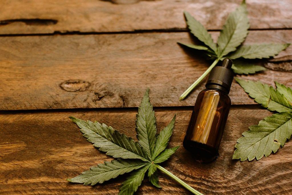 Maconha medicinal – Benefícios e efeitos colaterais da erva liberada no Brasil