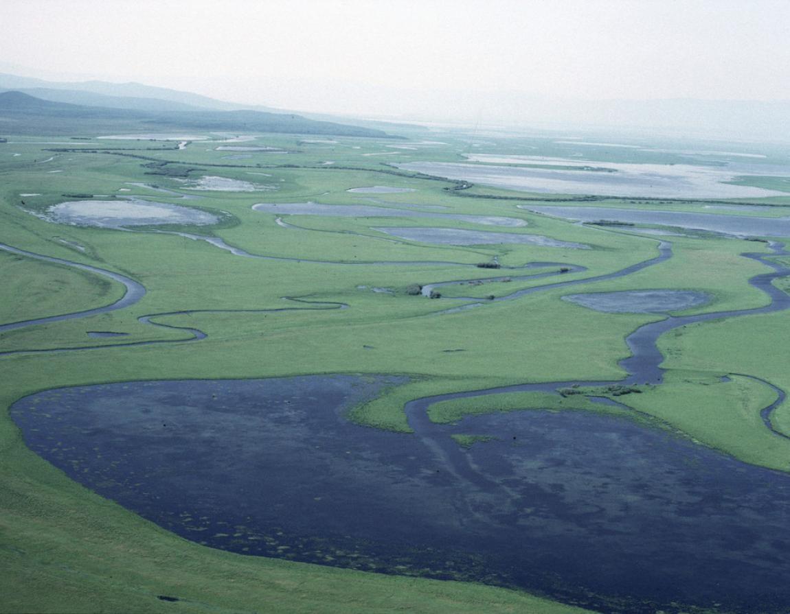Confira quais são os maiores rios do mundo e onde estão localizados