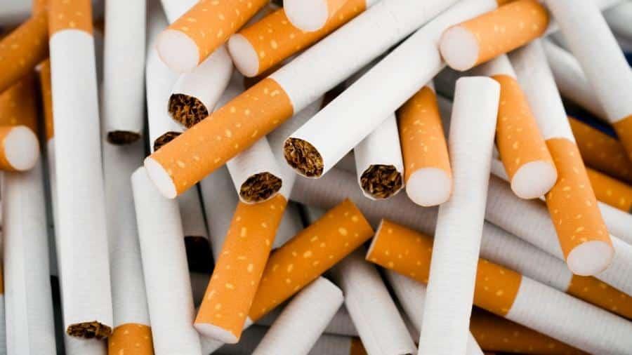 Cigarro: Tudo que você precisa saber sobre ele!
