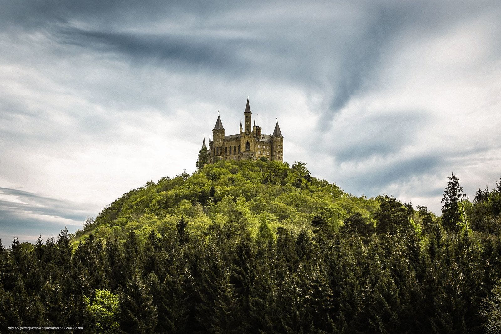 Floresta negra - O cenário de famosos contos de fadas é real