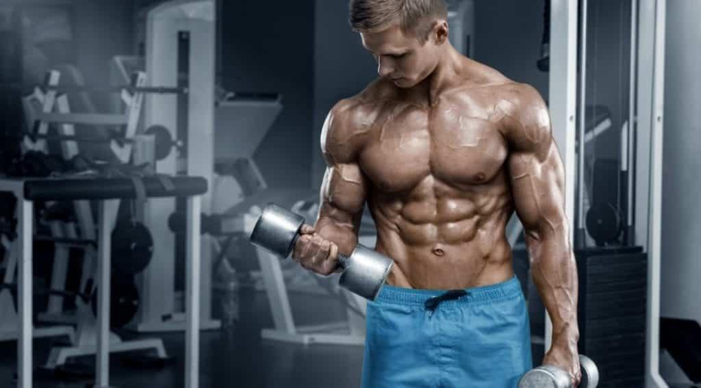 Ganhar massa muscular – Truques, dietas e resultados