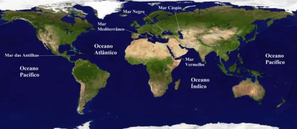 Serpentes Marinhas: onde vivem e como são.