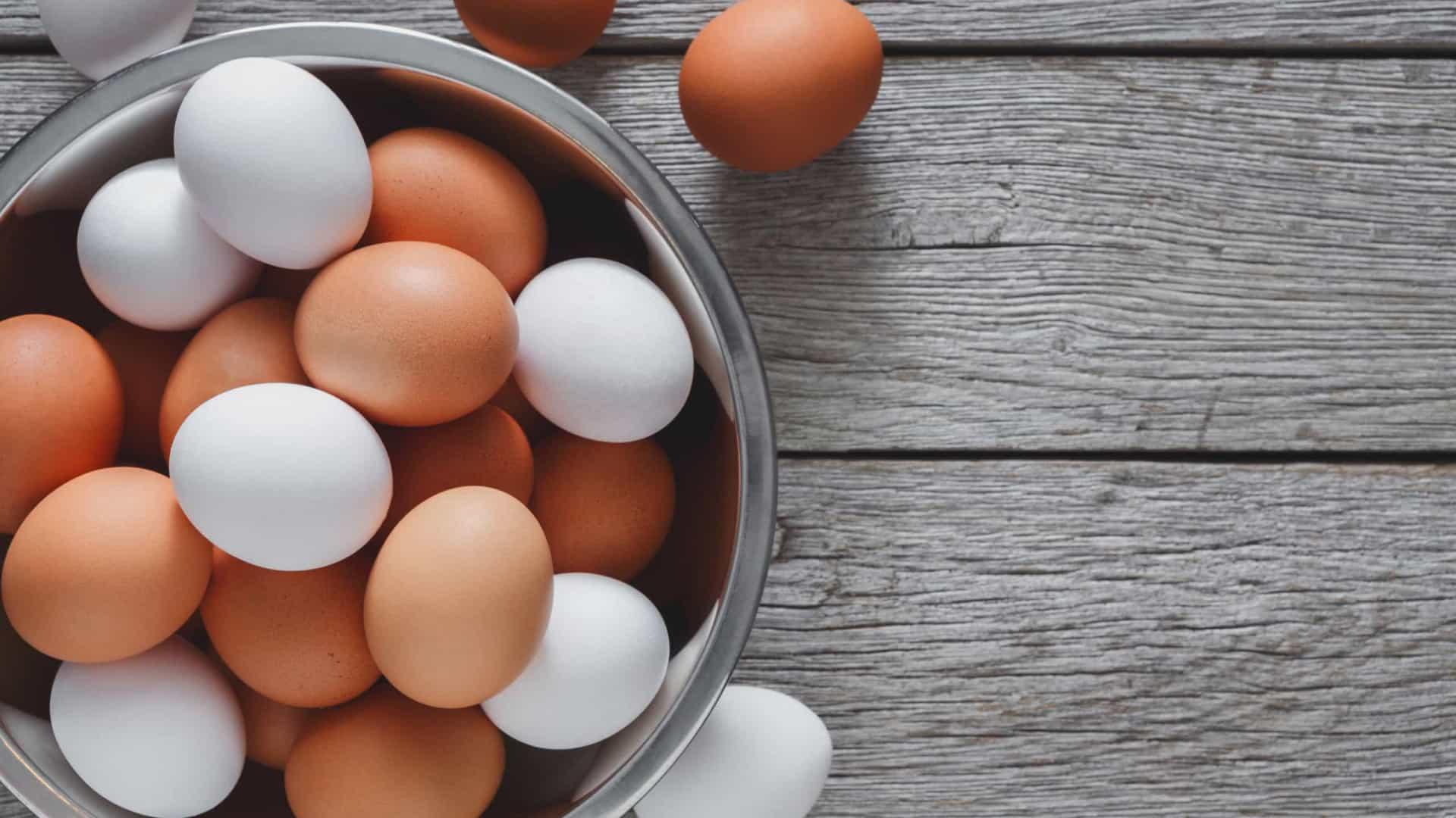 Ovos - Benefícios do alimento e formas de prepara-lo