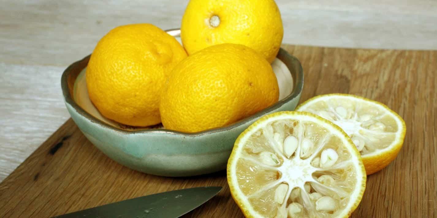 Yuzu - o limão japonês que encanta chefs com seu aroma único