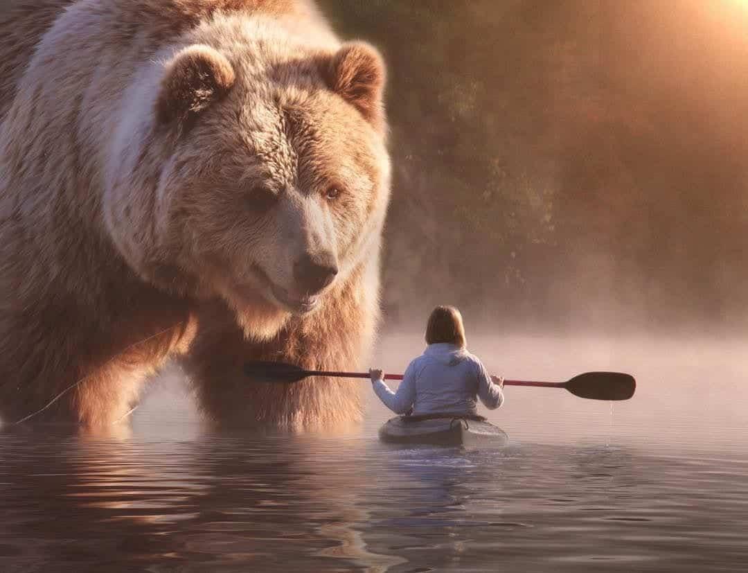 Animais gigantes - 10 espécies bem grandes encontradas na natureza