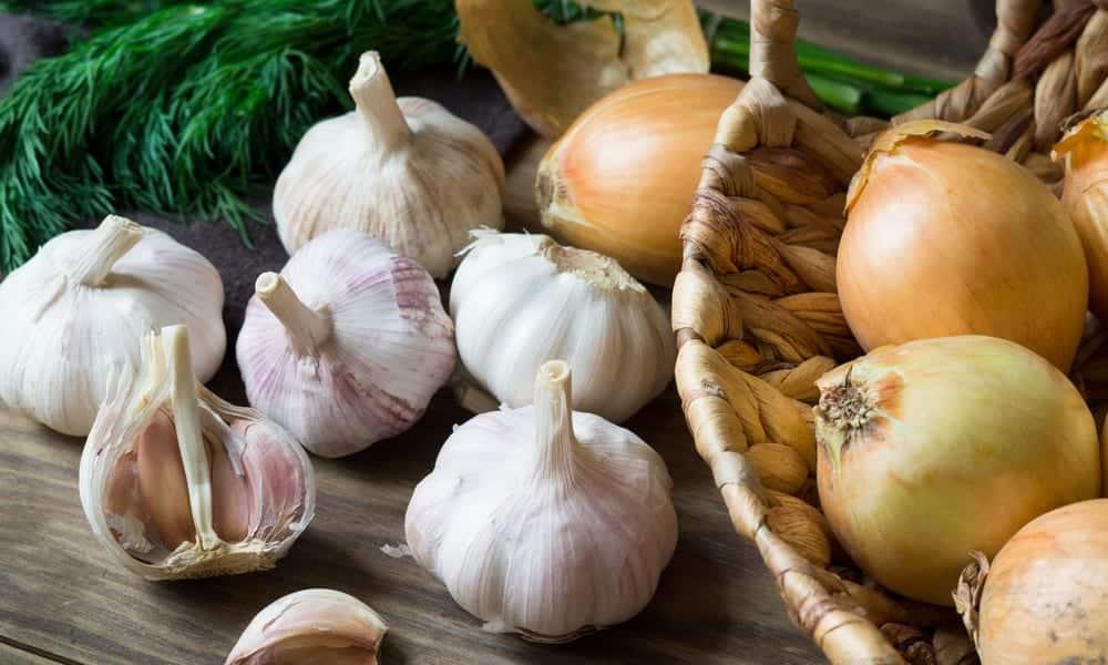 Cheiros do corpo - Quais os odores corporais e como previní-los?