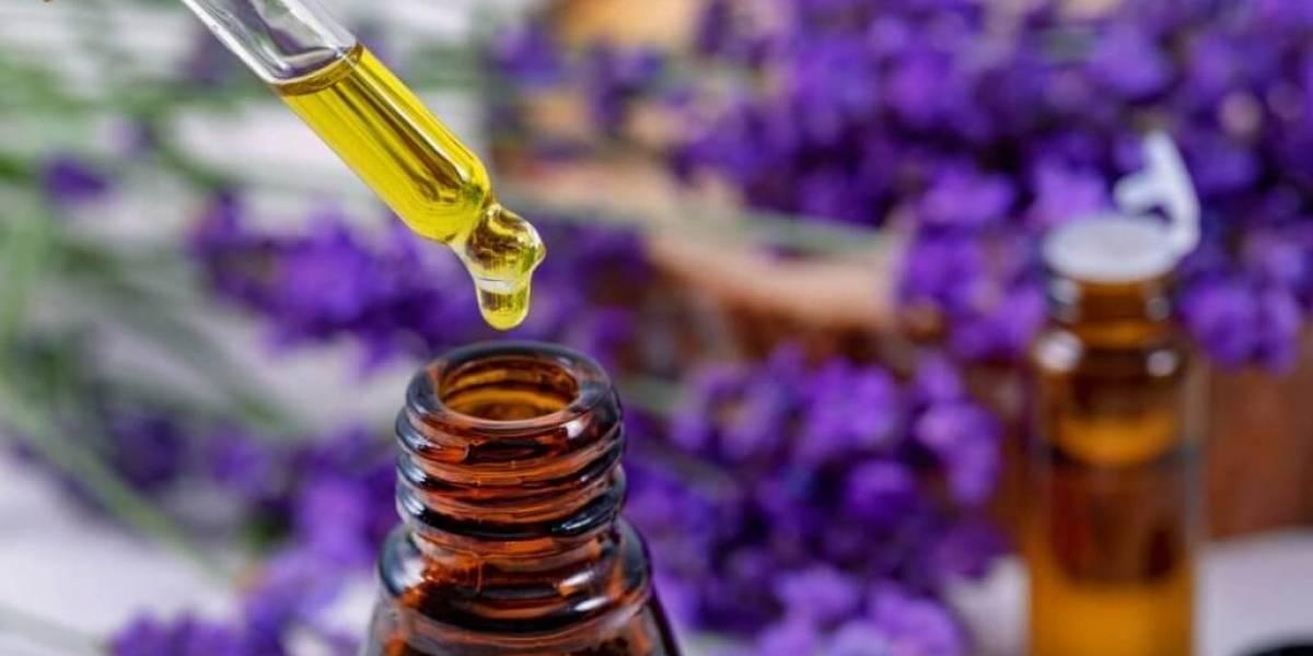 Remédios para asma - soluções fármacas e caseiras para o problema
