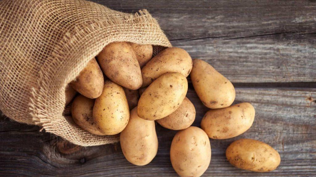 Batatas – Origem, tipos e utilidades que vão além da alimentação