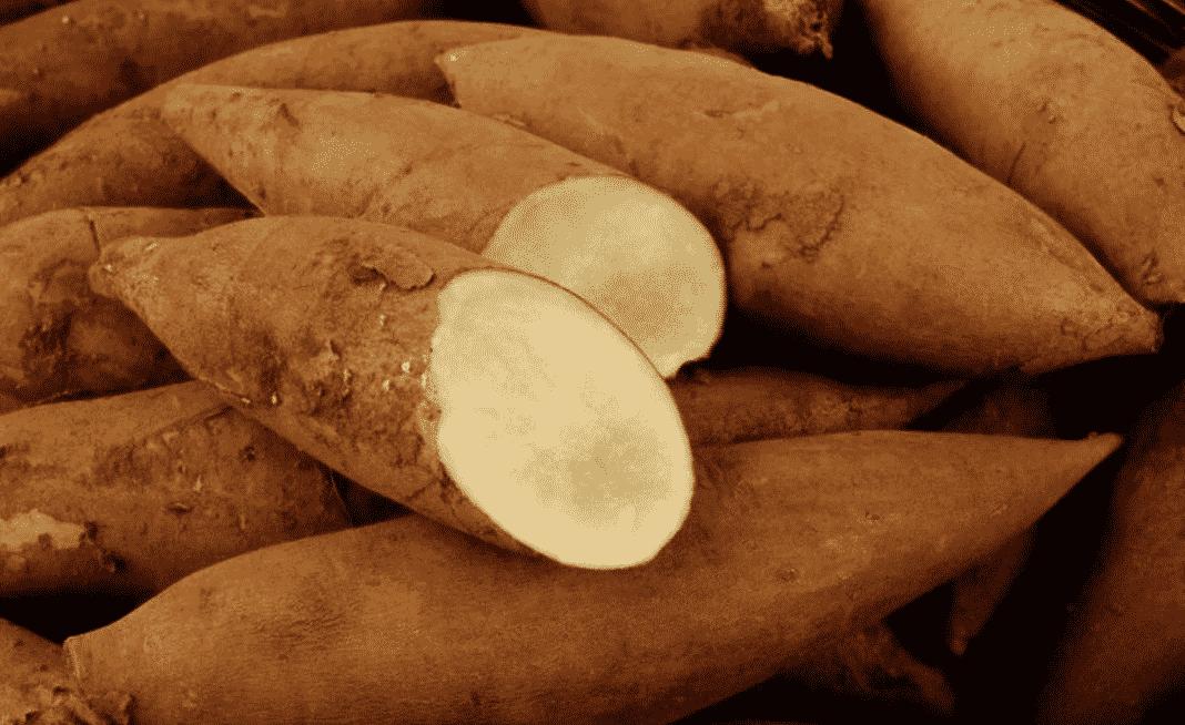 Batatas - Origem, tipos e utilidades que vão além da alimentação