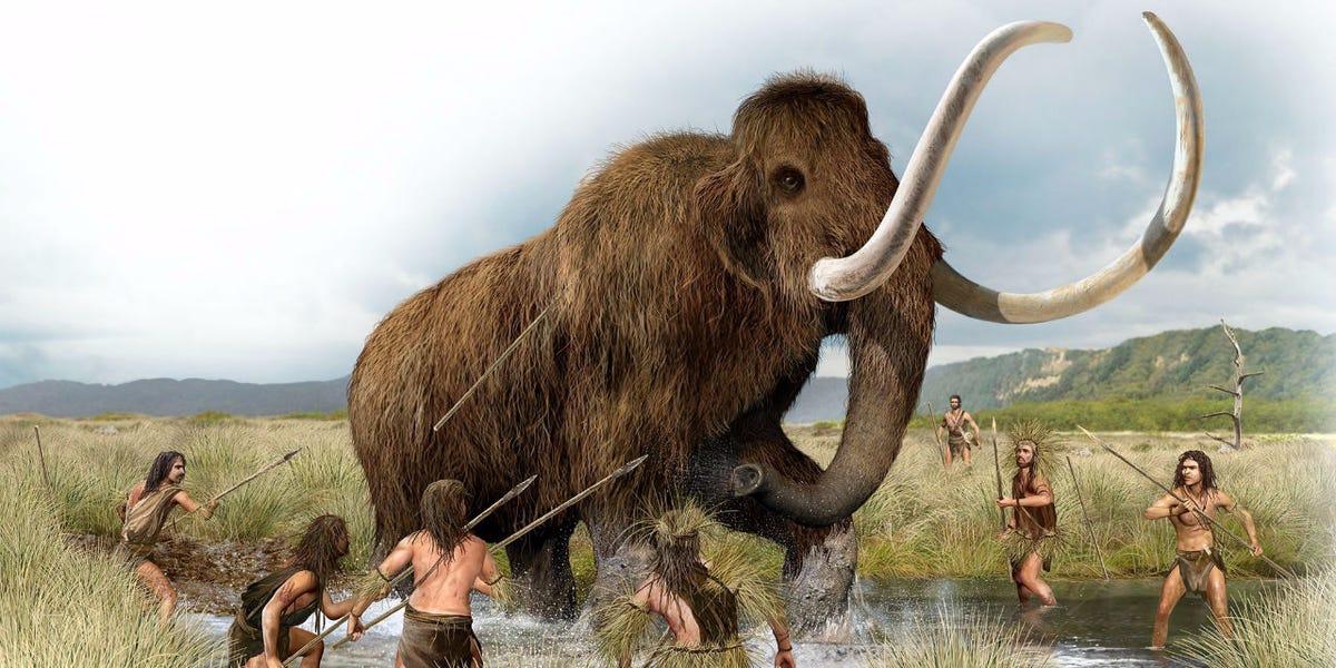 Mamute - principais características dos antepassados dos elefantes