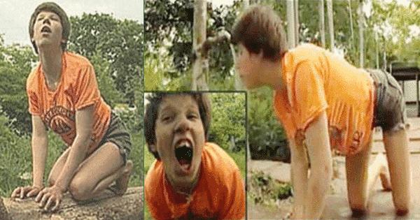 Crianças criadas por animais - 11 casos históricos ao redor do mundo