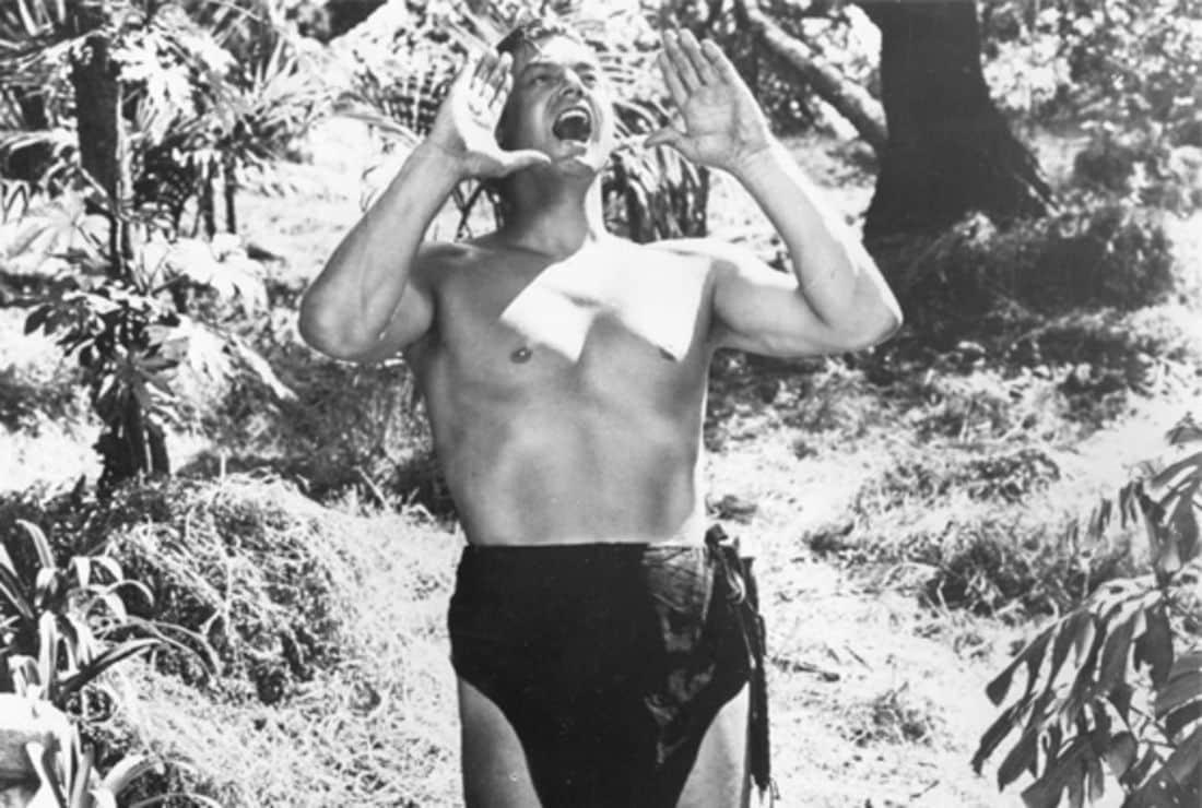 Tarzan - origem, adaptação e controvérsias ligadas ao rei das selvas