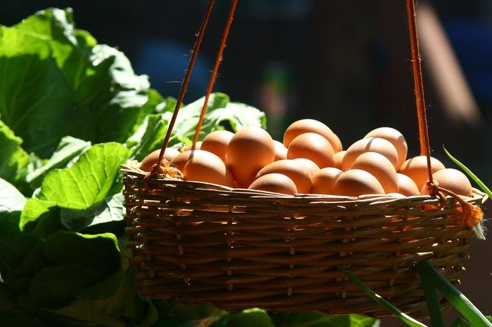 ovos possuem nutrientes e vitaminas
