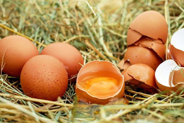 Benefícios do ovo - quais são e como atuam no organismo