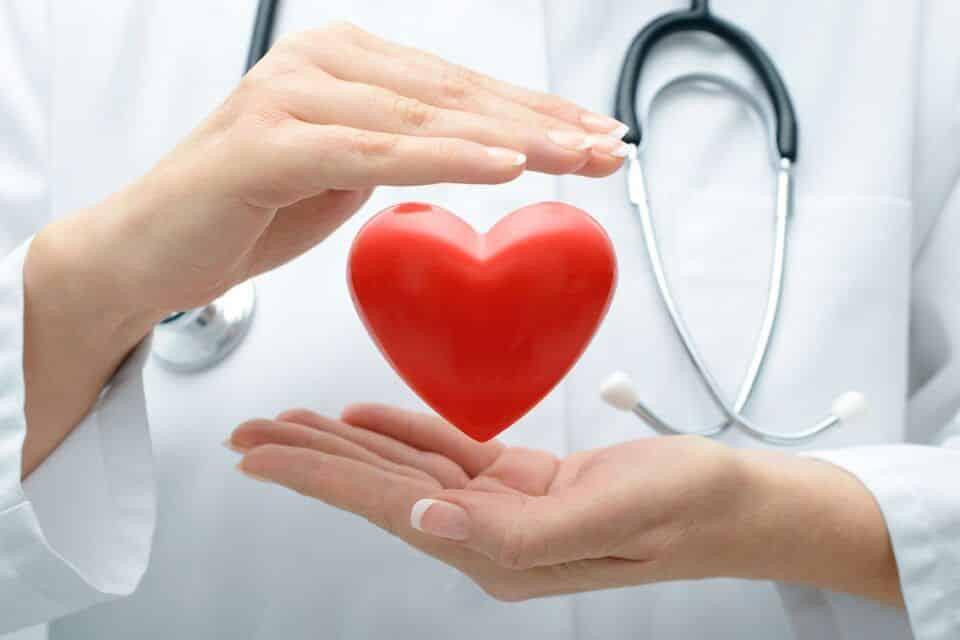 Fortalecer o coração – Alimentos e exercícios para a saúde do coração