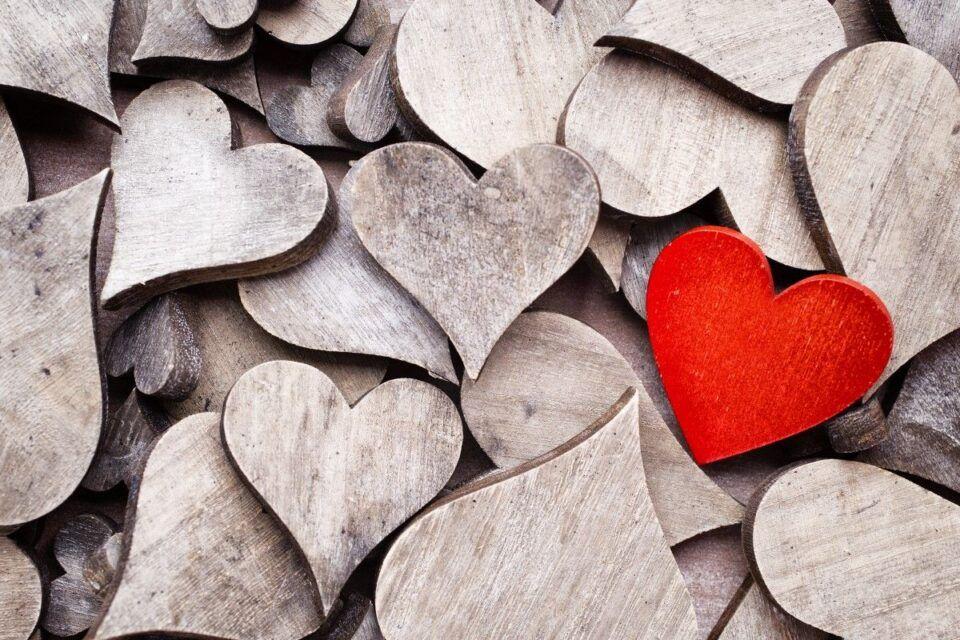Hormônio do amor – Como funciona a ocitocina no corpo humano