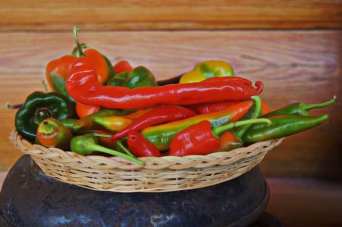 Benefícios da pimenta: saiba porque comidas picantes fazem bem para a saúde