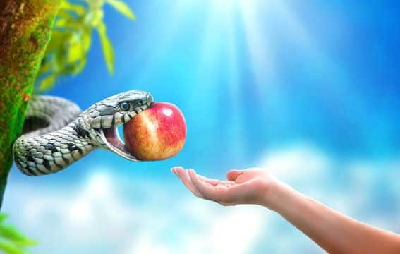 Fruto proibido - verdadeira origem do fruto do pecado (que não era maçã)