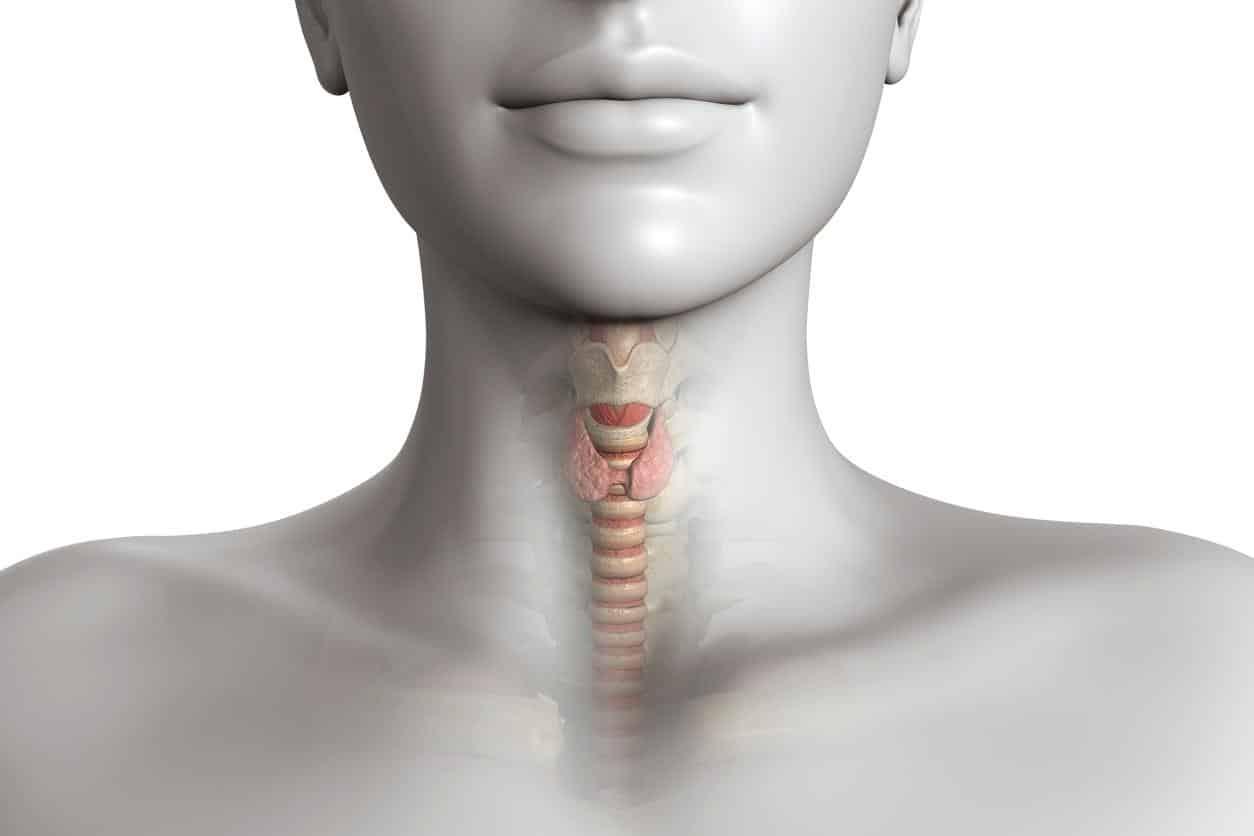 calcanhar rachado o que pode causar sintomas e como tratar 2