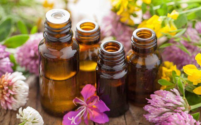 Expectorantes caseiros: 10 remédios para aliviar a tosse com catarro