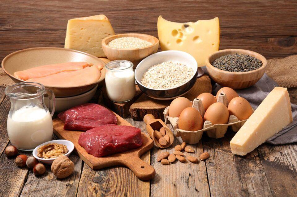 Fontes de proteína – Alimentos para a saúde e funcionamento do corpo