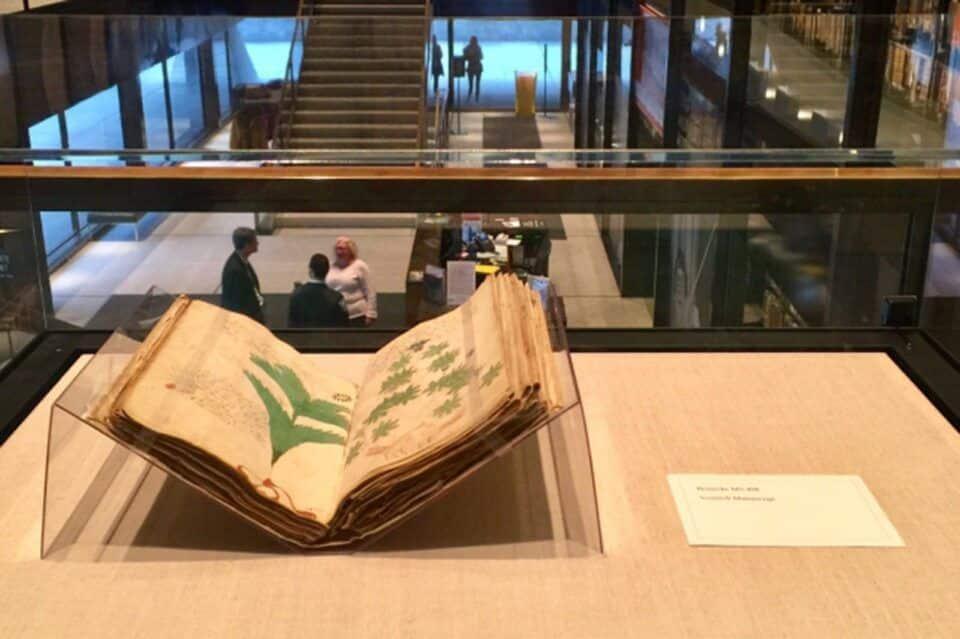 Manuscrito Voynich – História do livro mais misterioso do mundo