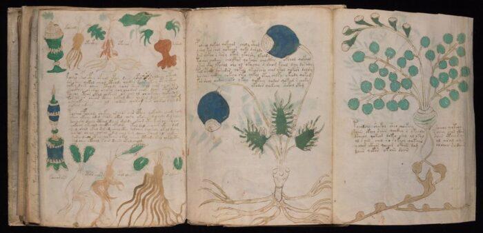 Manuscrito Voynich: conheça a história do livro mais misterioso do mundo