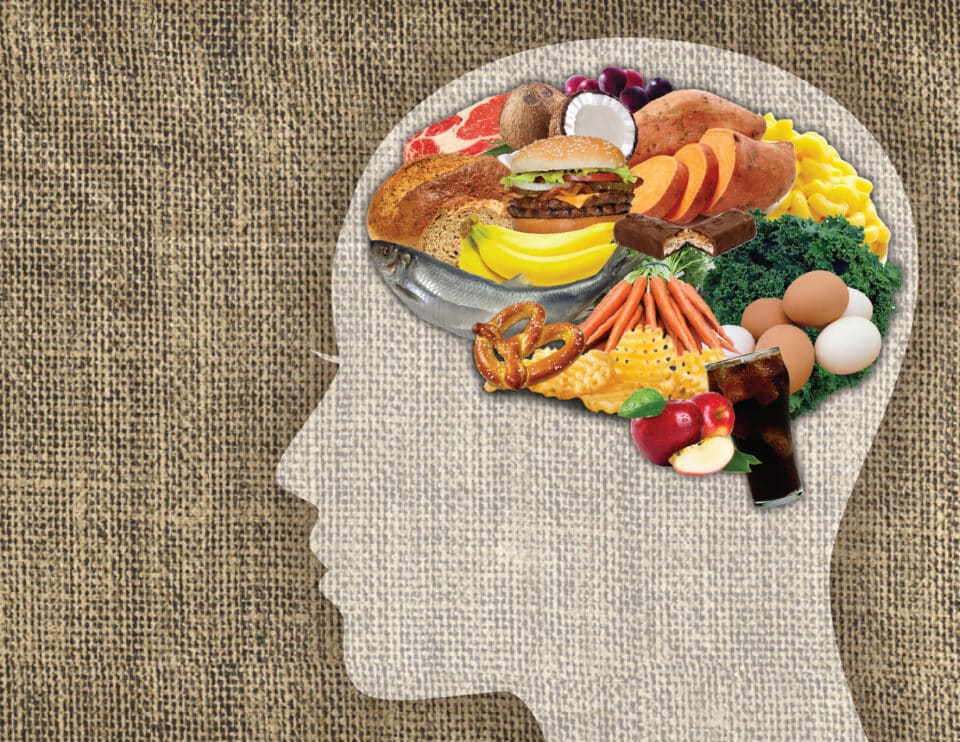 Alimentos para o cérebro – Principais nutrientes para a saúde do órgão