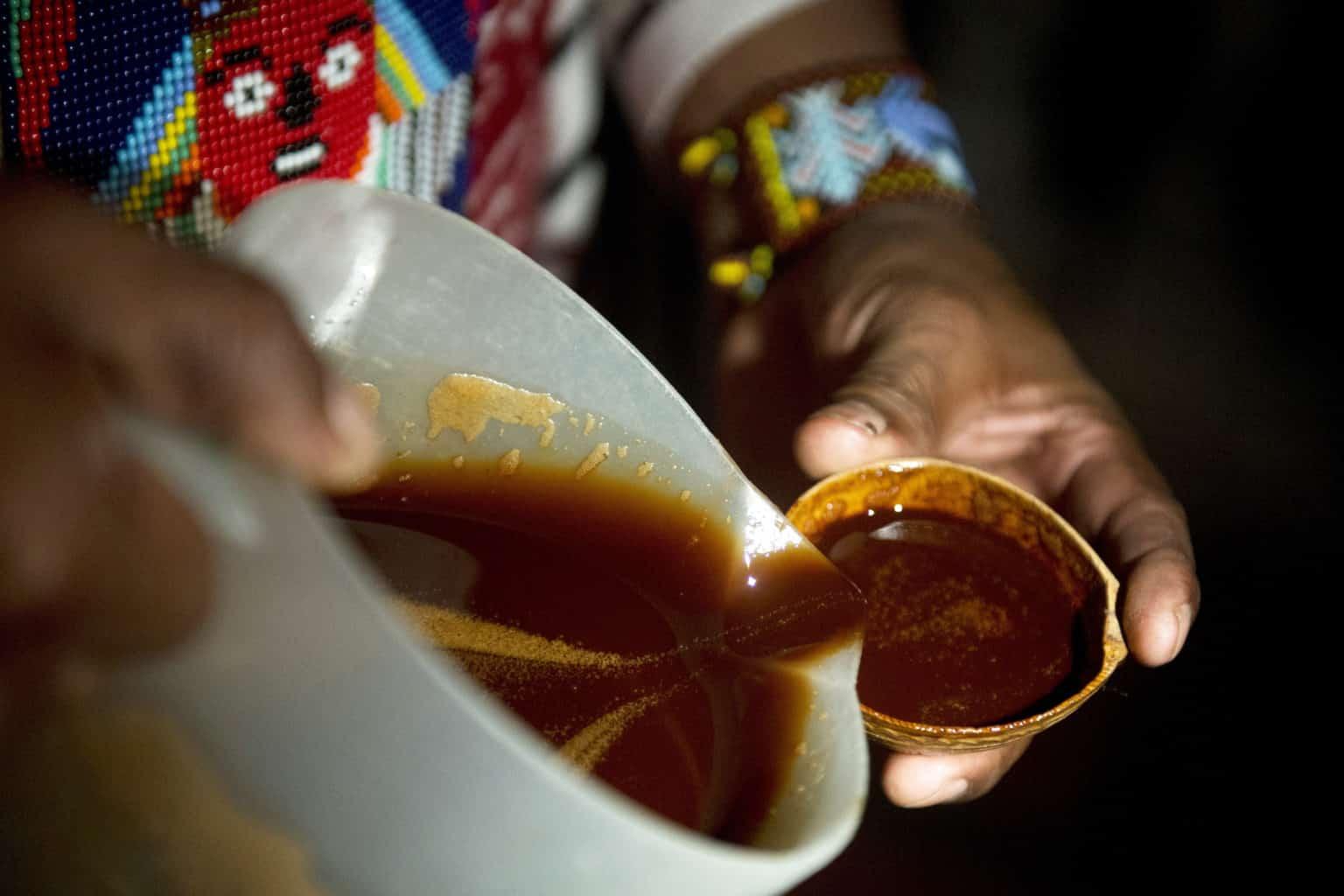 Ayahuasca, o que é? Características, usos e efeitos colaterais