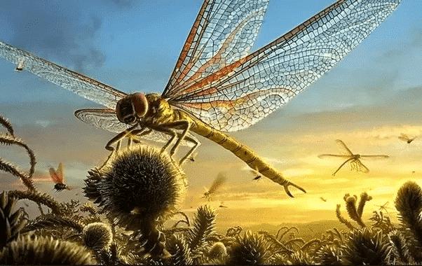 Insetos gigantes - principais exemplares de criaturas do passado