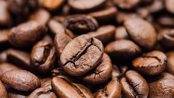 Origem do café - história e relação com a cultura brasileira