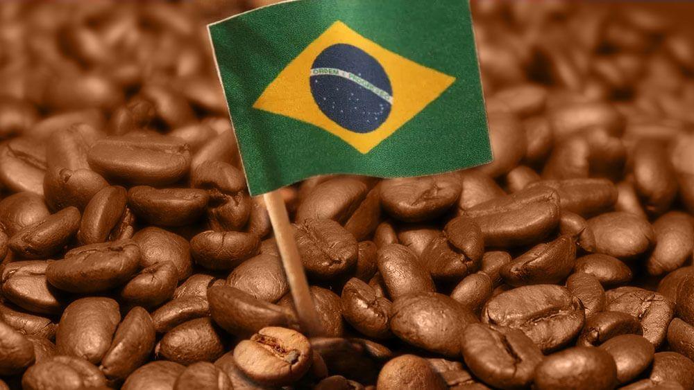 Grãos e uma bandeira do Brasil hasteada no centro