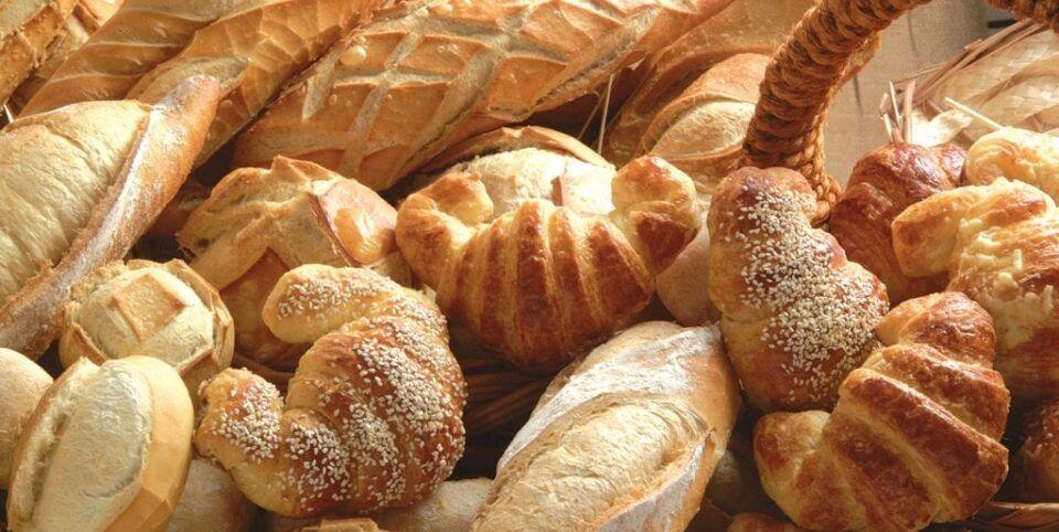 Origem do pão – História, evolução ao longo do tempo e curiosidades