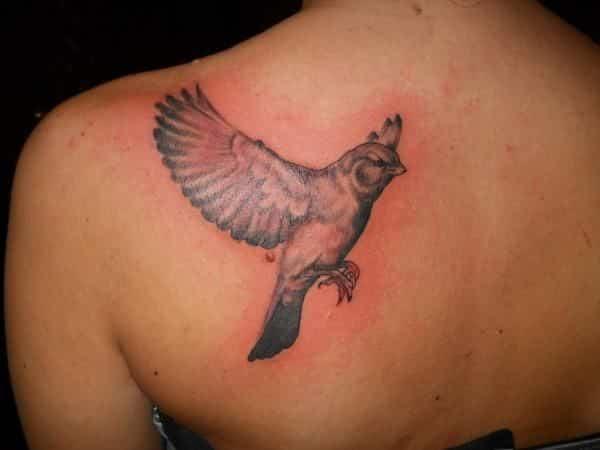 Tatuagem inflamada, o que é? Sintomas, tratamento e prevenção