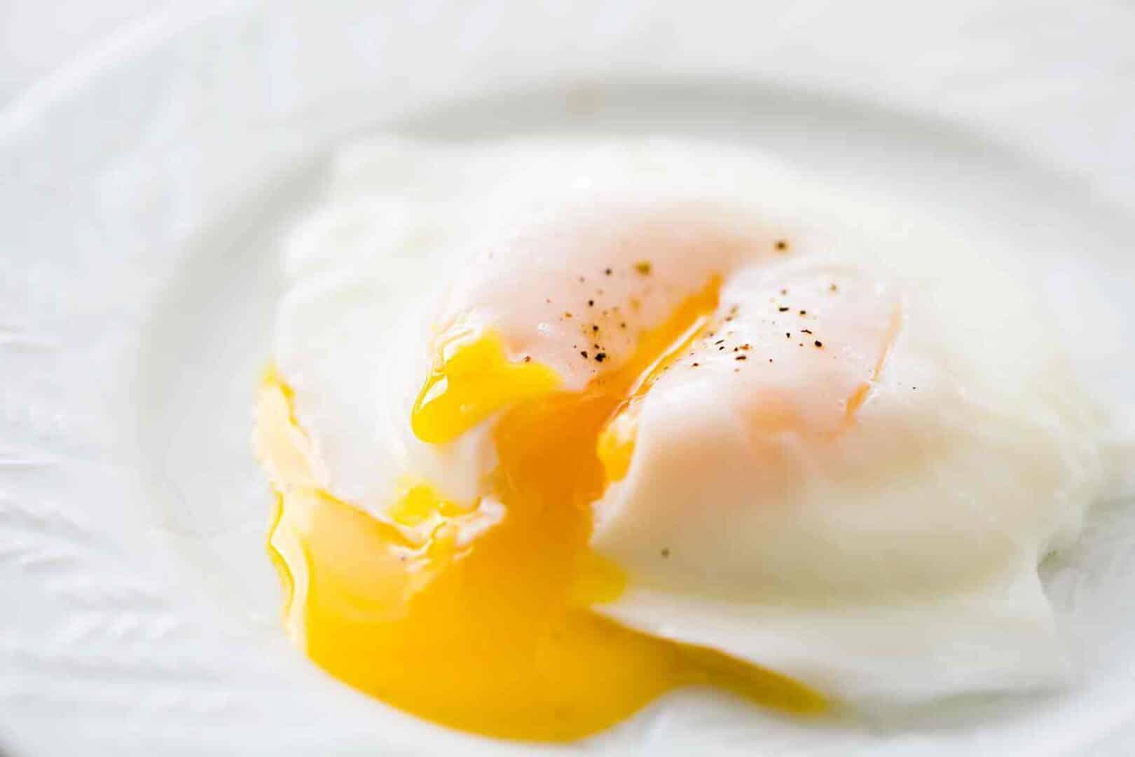 Comer ovo todo dia - benefícios e malefícios do ingrediente na dieta