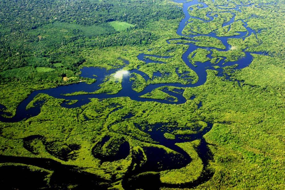 Estado do Amazonas – Curiosidades sobre o maior estado brasileiro