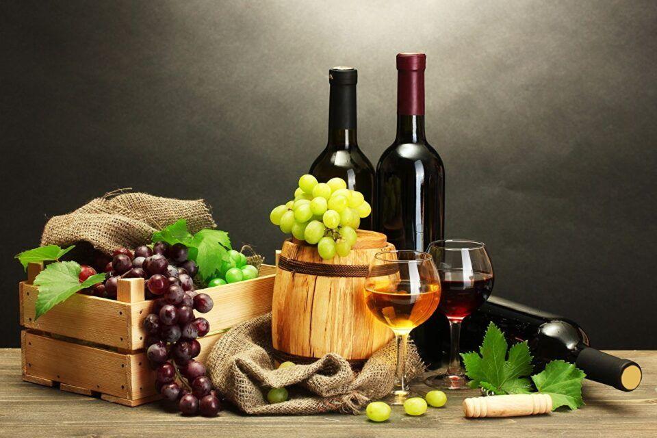 História do Vinho – Fatos e curiosidades sobre a origem da bebida