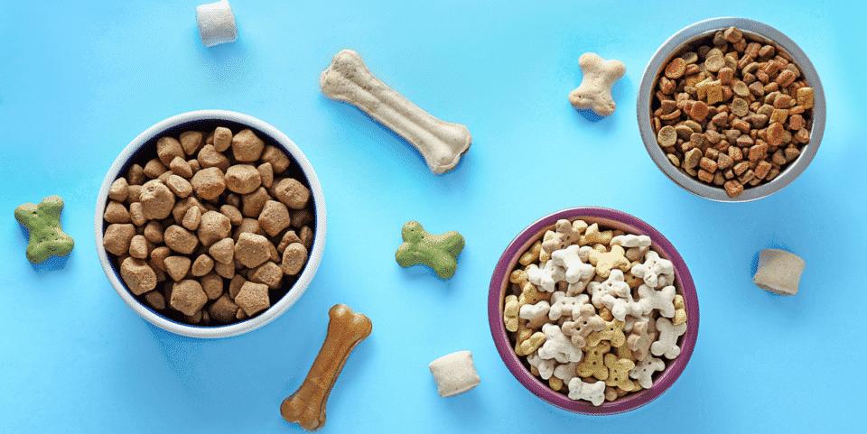Ração de cachorro – Como é feita e ingredientes utilizados