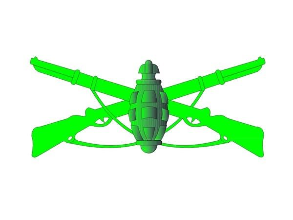 Símbolos do Exército Brasileiro: o que representam os emblemas militares?