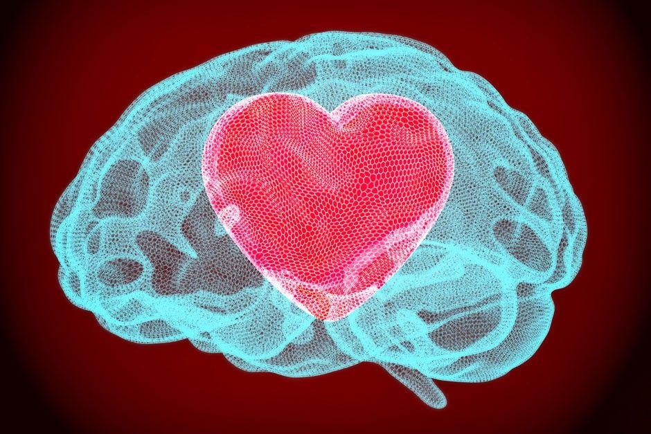 Cérebro apaixonado – Principais efeitos e reações da paixão e do amor