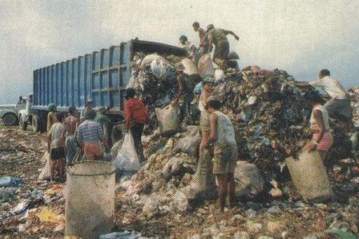 Ilha das Flores - como o documentário de 1989 fala sobre consumo