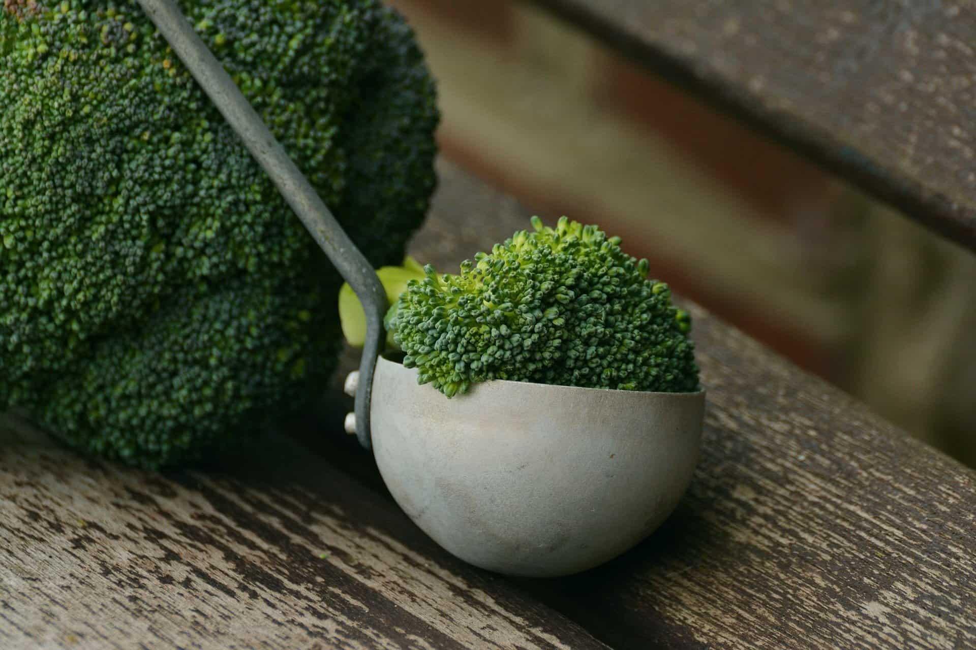 Fotografia de um brócolis para ilustração do item